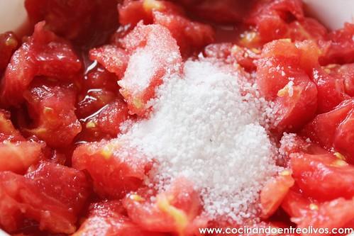 Tomate frito Thermomix (5)