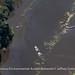 louisiana-flood-flight-2119