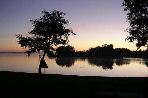 sunds sø fugl lake sundssø sol solopgang sunrise