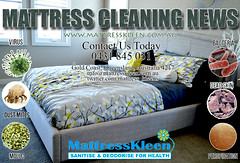Mattress Cleaning Gold Coasts, Professional Cleaners