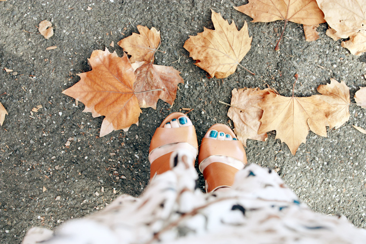 autumn leaves toes