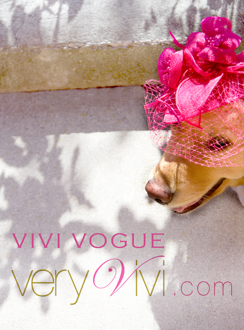 From The Vivi Vogue Collection