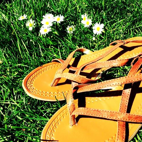 picnicshoes