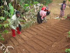 agriculture(1.0), farm(1.0), sowing(1.0), field(1.0), soil(1.0), farmworker(1.0), crop(1.0), plantation(1.0),