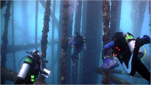 May, 2012 EPA divers survey oil platforms for invasive species