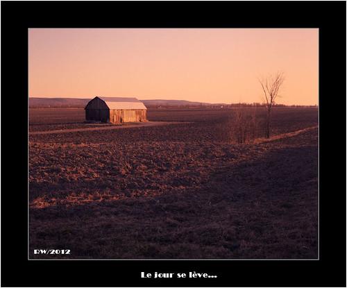 morning tlr barn landscape model kodak f 100 paysage grange matin ektar ciroflex