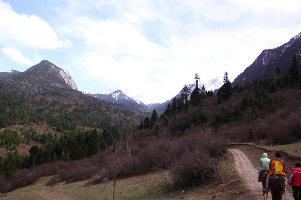 Trekking road