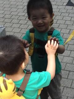 朝散歩とらちゃん (2012/6/15)