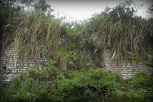 complejo-arqueologico-de-la-congona2-amazonas