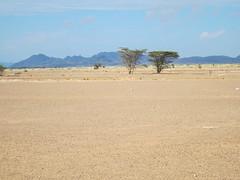 Northern Kenya