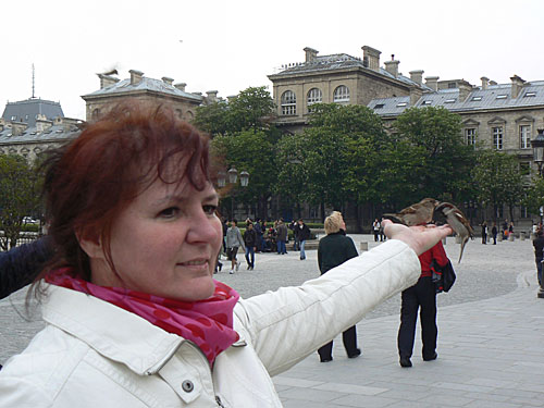 oiseaux dans la main.jpg