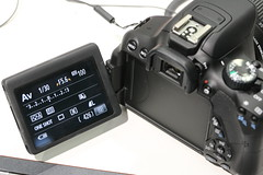 CANON EOS Kiss X6i (EOS 650D) and EF-S18-135mm F3.5-5.6 IS STM