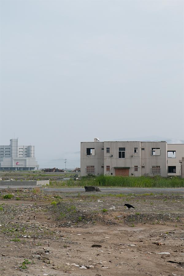 陸前高田市