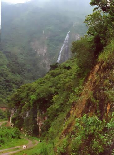 gary-scott-ecuador-shaman-images
