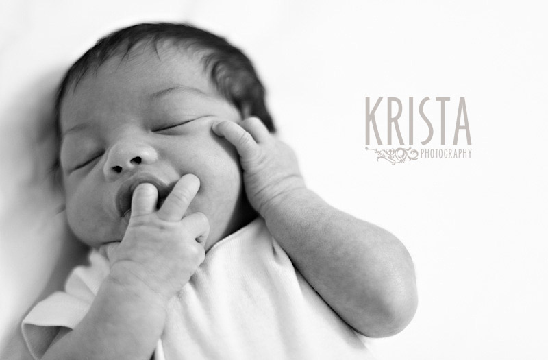 Dawson Newborn Portrait Session
