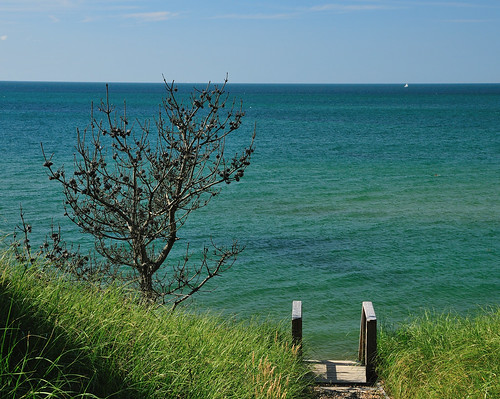 ocean tree water view steps nantucket nantucketsound d300s 1685mmf3556gvr 1685mmvr