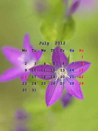 201207_iPadWP