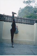 Mon, 07/11/2011 - 10:34 - Shifu kanishka Sharma Shi Yan Du www.shaolinindia.com Shaolin Kung Fu training in India