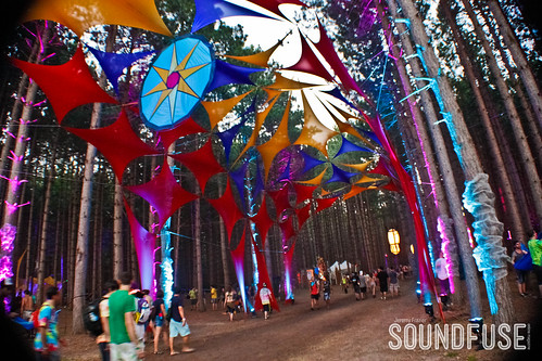 2012 Electric Forest Festival-28.jpg