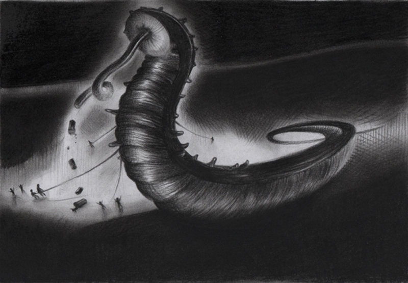 Rens Krikhaars' Holothuroidea - 2