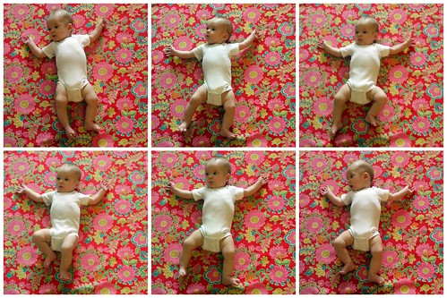 Four Months Collage
