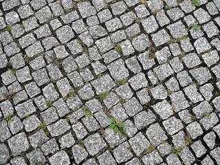 Image of Rahel Hirsch. berlin texture germany deutschland plaster granite mitte pflaster granit textur pflasterstein