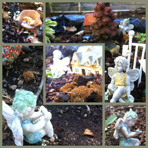 Fairy gardens #casabestogether