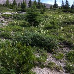 20120730 ha ling peak - 11