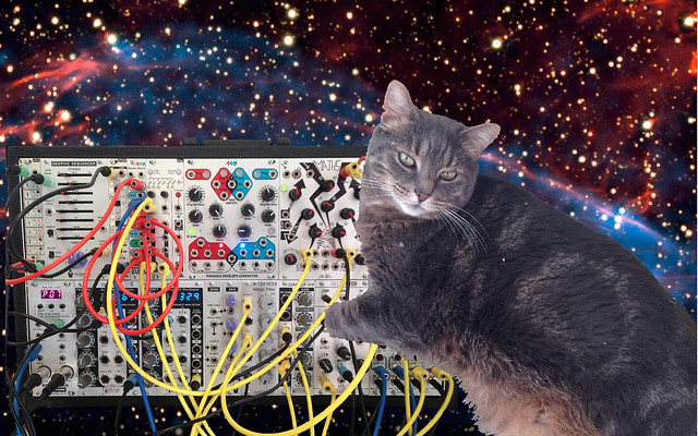 7688628502 a8e171ed77 z A Cat, A Synthesizer & Outer Space (and a couple modular patches)