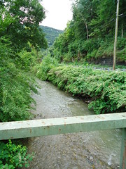 Creek under 801 Bridge #2