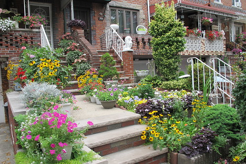 Greenest Block in Brooklyn 2012
