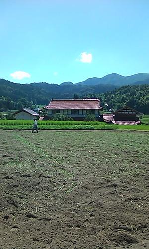 蕎麦の種まき。 右側船通山
