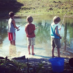 Bluegill fishing - all day long #MOBsociety #nature study #Homeschool