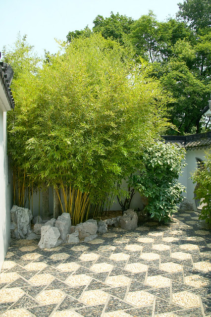 Asian zen theme garden flickr photo sharing for Japanese themed garden plants