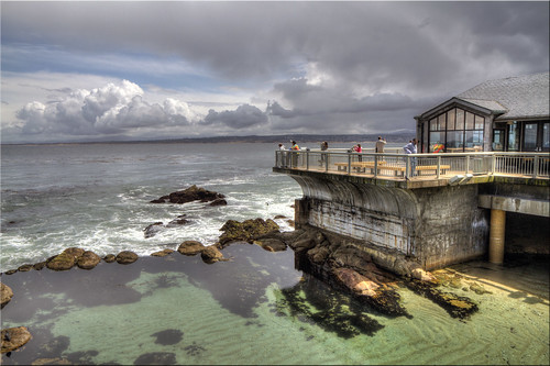 ocean sky pool clouds forest aquarium bay monterey pond day pacific cloudy row deck kelp 100views hdr 0822 cannery hovden photomatix 0824 tonemapped 0823
