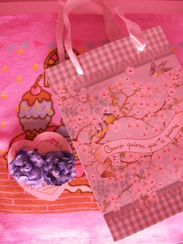 blue flowers and flowery bag