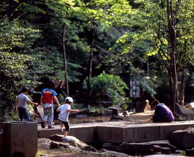 初夏の川遊び
