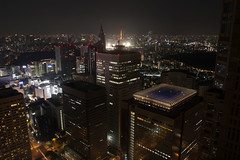 A view from Tokyo Metropolitan Government Building Observation #1