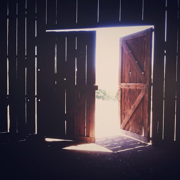 Barn Door definition/meaning