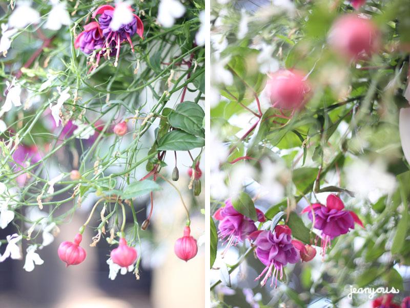 tgif-suscia-flower-pot-pants