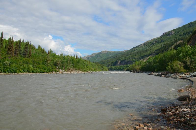 Nenana downstream