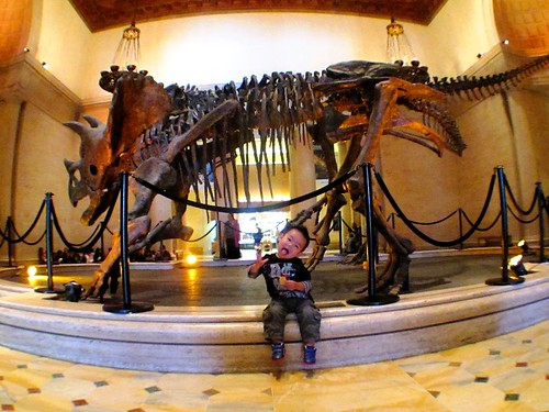 Ju Lien's son is a fan of dinosaurs