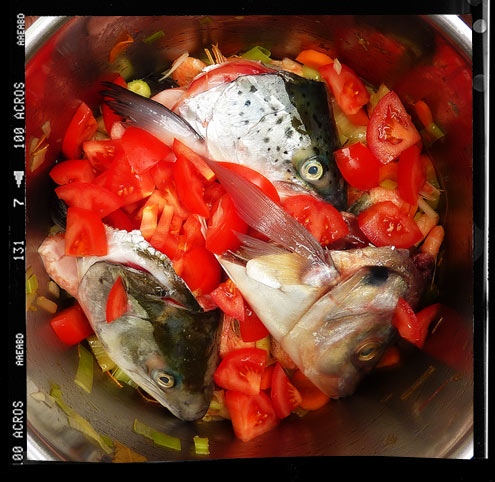 Fish stock