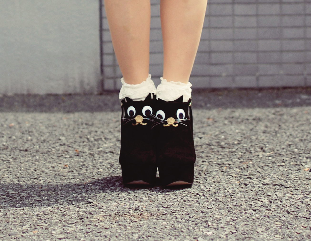 DIY cat shoes