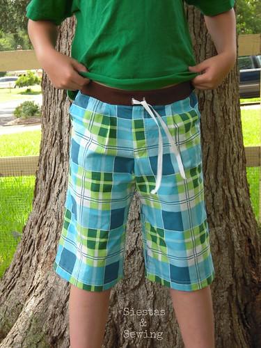 Plaid Sketchbook Shorts