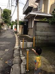 朝散歩 (2012/7/13)