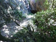 Remontée du Carciara : l'ancien chemin en RD à son arrivée dans le canyon