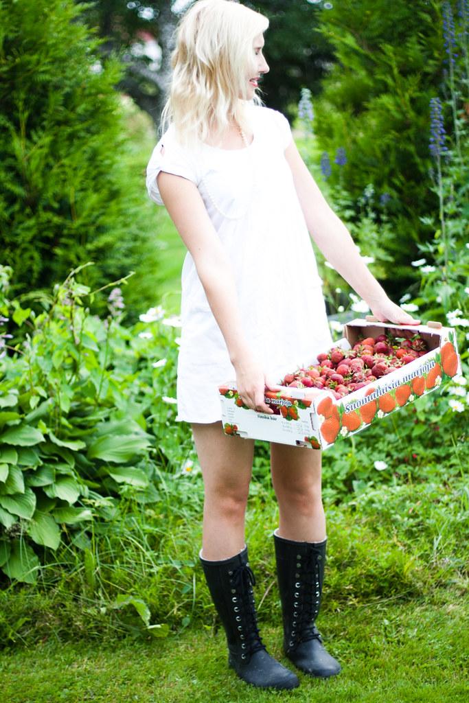 jordgubbar_4
