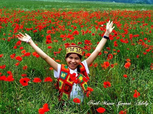 Joie de Vivre, coqelicot, prairie florale, fleurie,