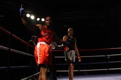 striking combat sports, boxing ring, professional boxing, individual sports, contact sport, sports, combat sport, muay thai, kickboxing, sanshou, boxing,